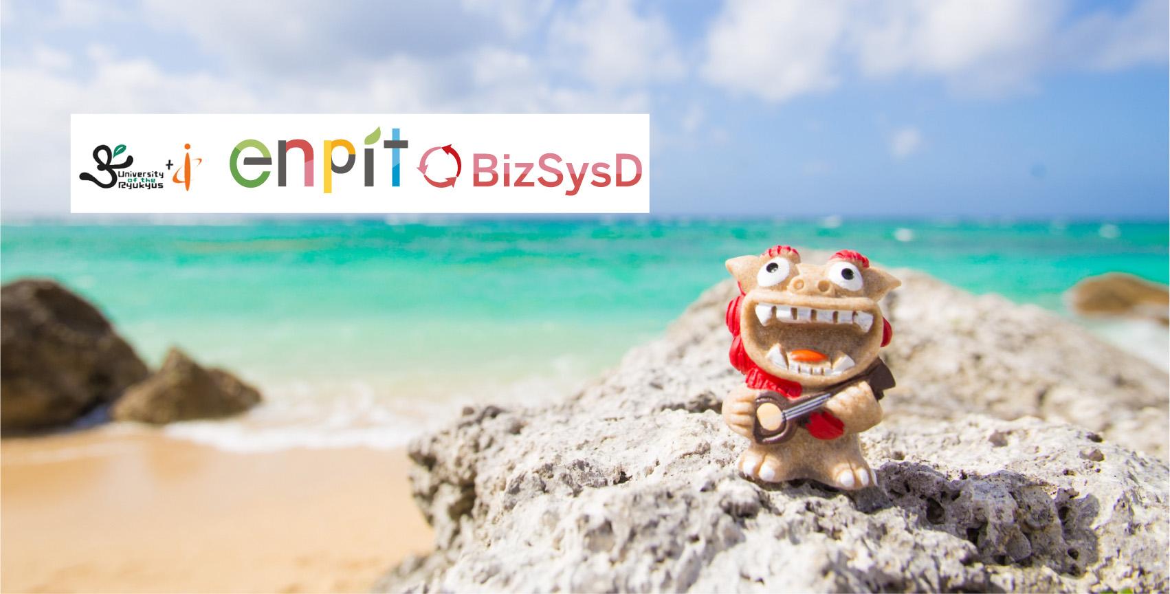 enPiT-BizSysD at IE-Ryukyu